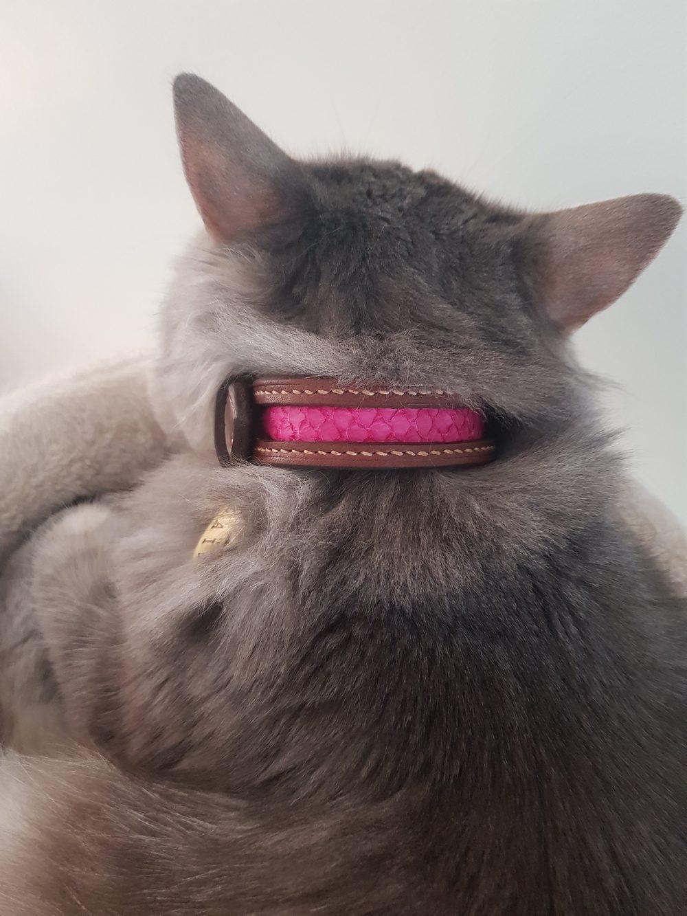 collier chat sur mesure cuir artisanal écailles
